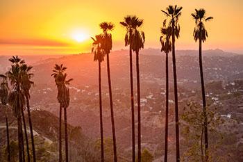 North Hollywood Property Management image 1