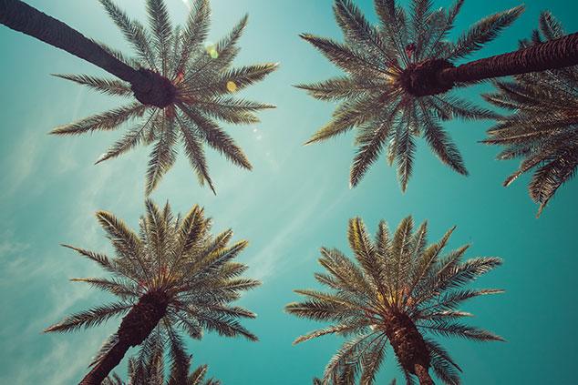 Santa Ana Property Management image 3