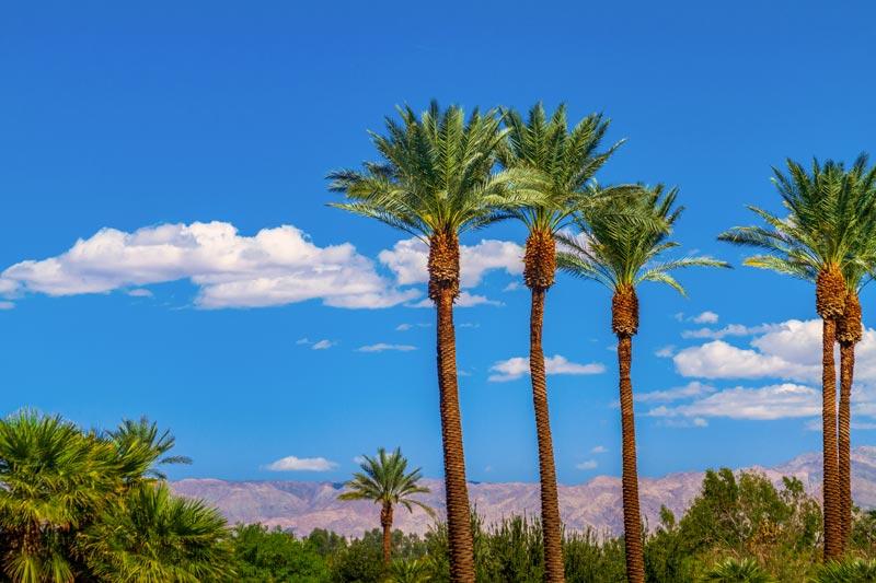 San Bernardino Property Management image 1