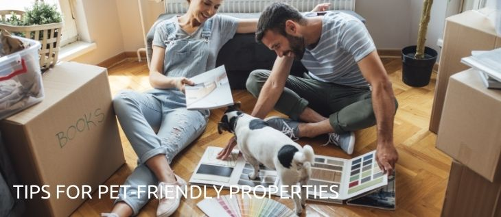 A Complete Guide for Pet-Friendly Properties thumbnail